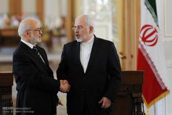 Zaif, Iraqi counterpart meet in Tehran