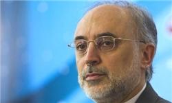 صالحی: آغاز ساخت دو نیروگاه هستهای هزار مگاواتی به زودی