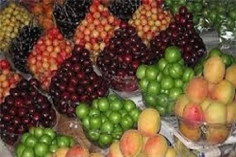 متولی مبارزه با قاچاق میوه کیست؛ از امتناع نعمتزاده تا نامهنگاری حجتی