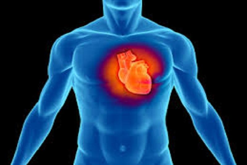 روش جدیدی برای شناسایی عامل بیماری قلبی ابداع شد