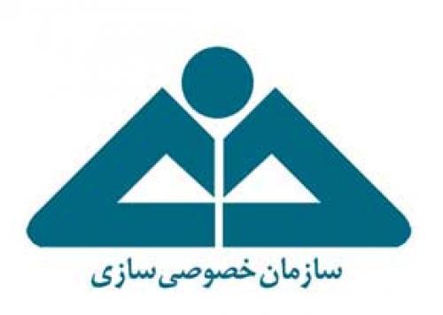 بخش خصوصی در ایران