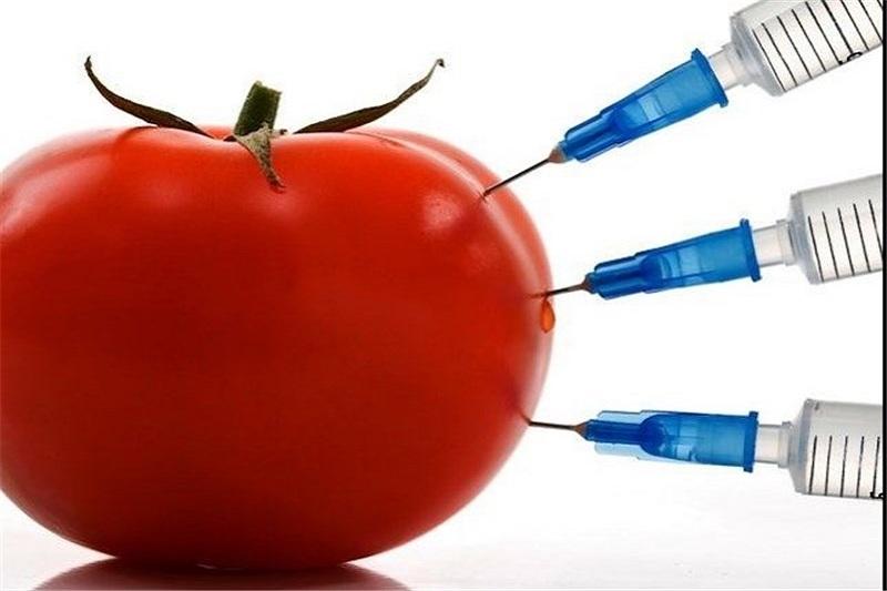 چرا موضع سازمان غذا و دارو یکباره تغییر کرد؟ «تراریخته» ناگهان سالم شد؟
