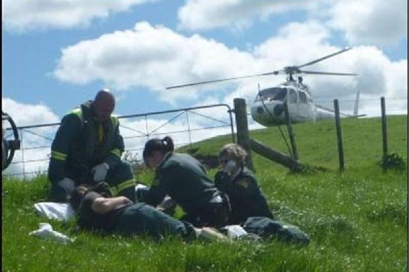 لگد اسب دختر ۹ ساله را به کام مرگ برد