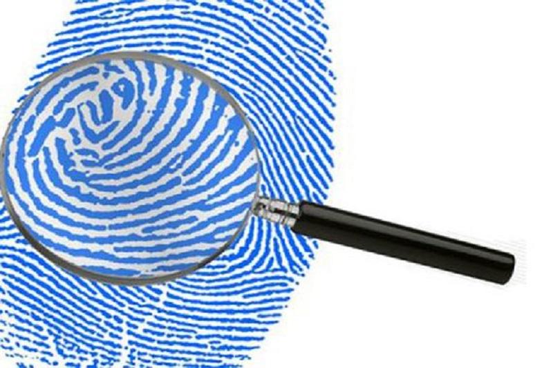 کمپین انتخاباتی حامیان دولت از شهریور 95 کلید می خورد