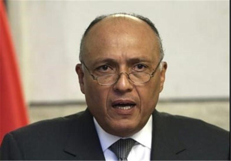 شکری: توافق ترسیم مرزها با عربستان هرگز پیش از اقدامات قانونی اجرا نخواهد شد