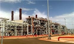 سردرگمی سردرگمی شرکتهای نفتی غرب به دلیل گروگانگیری در الجزایر