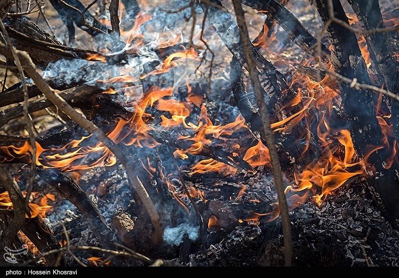 اعزام بالگرد برای اطفاء حریق جنگلهای کوهدشت/ آتشسوزی همچنان ادامه دارد