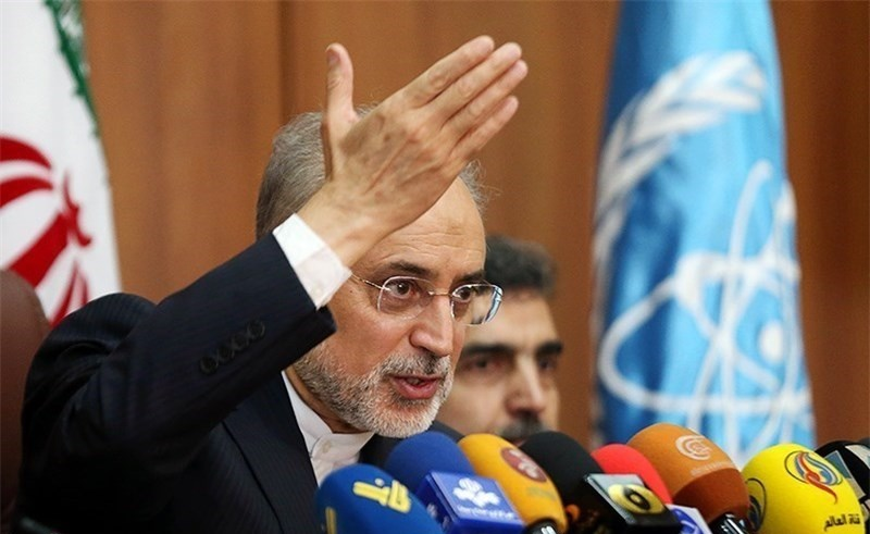 صالحی: ساخت ۲ واحد نیروگاه اتمی جدید بوشهر براساس استانداردهای روز هستهای/صرفهجویی سالانه ۲۲ میلیون بشکه نفت خام