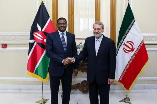 عکس: دیدار رؤسای مجلس ایران و کنیا