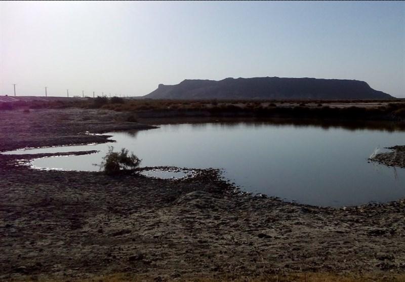 چرا محیط زیست خشک شدن هامون را انکار میکند؟/ خطری که در کمین منافع ملی در آبهای مرزی است+ تصاویر هامون خشکیده