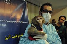 دلسوزی وزارت امور خارجه آمریکا برای میمون فضانورد ایرانی