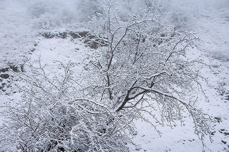 خاطرهبازی با زمستانهای برفی دهه شصتیها