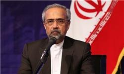 سیاست ارعاب و تهدید آمریکا بانک های اروپایی را برای کار با ایران محتاط کرده است/ نیاز به دیپلماسی اقتصادی داریم