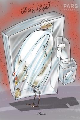 کاریکاتور:شیوه مطمئن جلوگیری از سرایت آنفلوآنزای پرندگان!