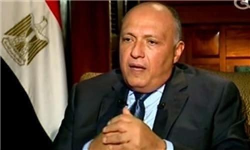 وزیر خارجه مصر تماسهای قاهره با تهران را تأیید کرد