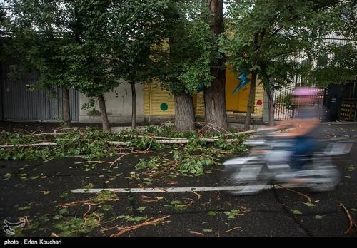 طوفانی با سرعت نزدیک به ۱۰۰ کیلومتر در تهران