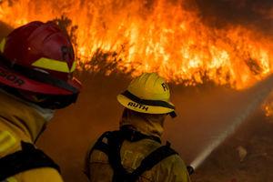 افزایش تعداد قربانیان آتشسوزی در کالیفرنیا
