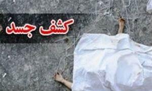 کشف جسد سوخته شده در فضای سبز بزرگراه صیاد شیرازی
