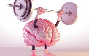 مغز خود را با ورزش بزرگ کنید