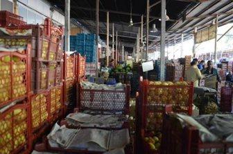 جدیدترین قیمت ۵۴ میوه و صیفی در میادین مرکزی میوه و تره بار+ جدول