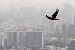 تهران در یک ماه اخیر فقط ۷ روز هوای سالم داشت