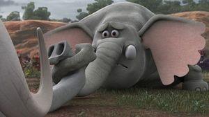 چرا «فیلشاه» برای جشنواره فجر انتخاب شد؟