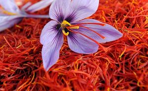 صادرات زعفران ایرانی با برند افغانستان به هند