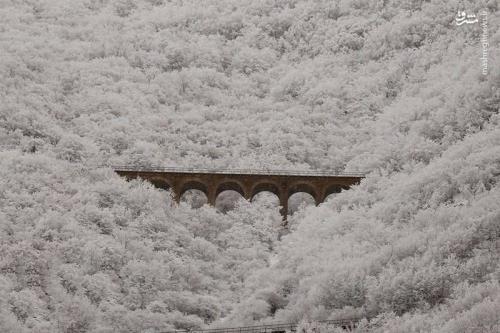 نمایی زیبا از کوههای برفی+عکس