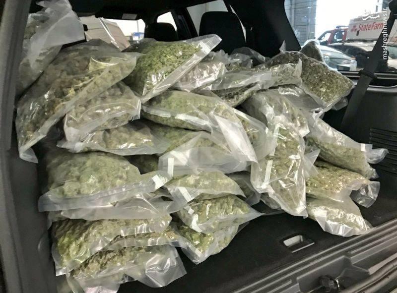 عکس/ کشف 35کیلوگرم ماریجوآنا در یک خودرو