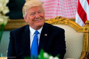 ترامپ، رئیس جمهوری که خوب پارس میکند اما گاز نمیگیرد