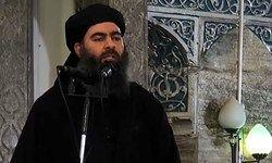 البغدادی دستور داعشی در عراق و سوریه را صادر کرد