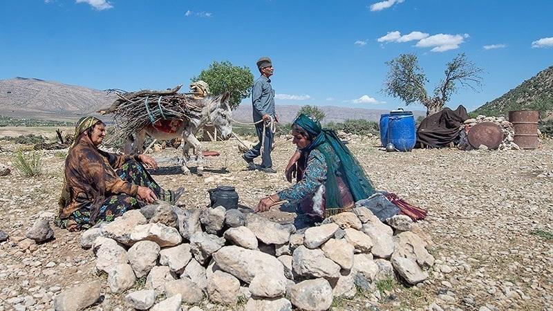 ۳ میلیون و 370 هزار خانوار روستایی و عشایر از هرگونه بیمه بازنشستگی محروم اند
