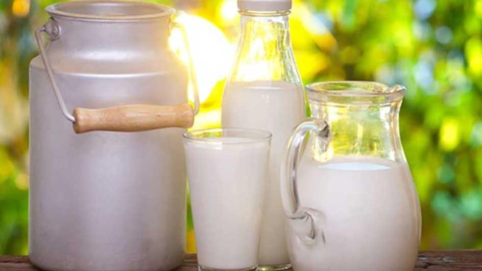 شیر تولید کشور شناسنامه دار میشود