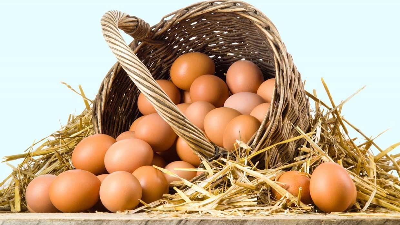 قیمت تخم مرغ پوسته قهوهای+جدول