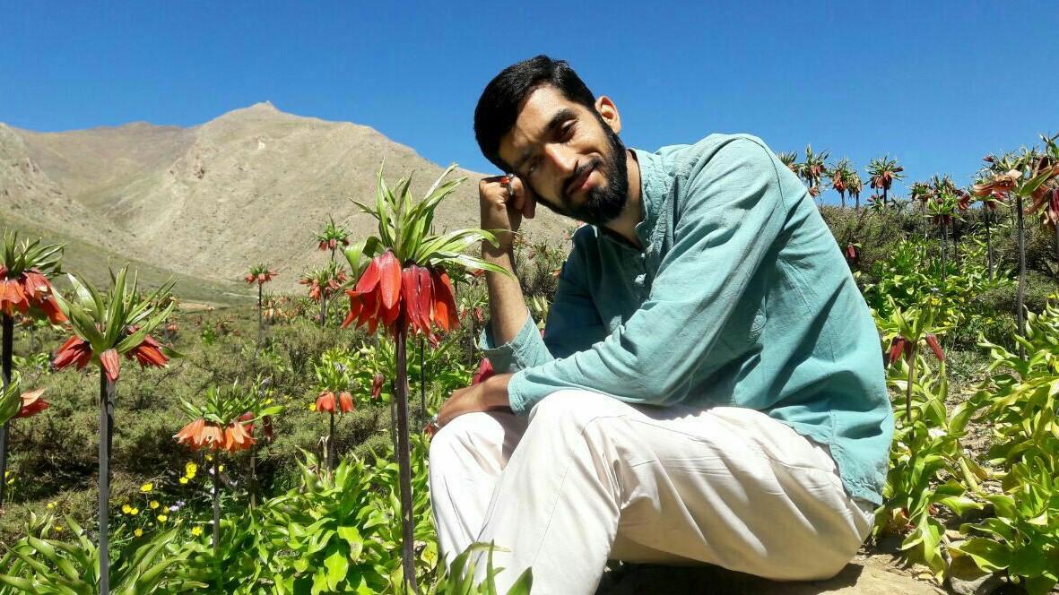 آخرین اخبار از سریال شهید حججی