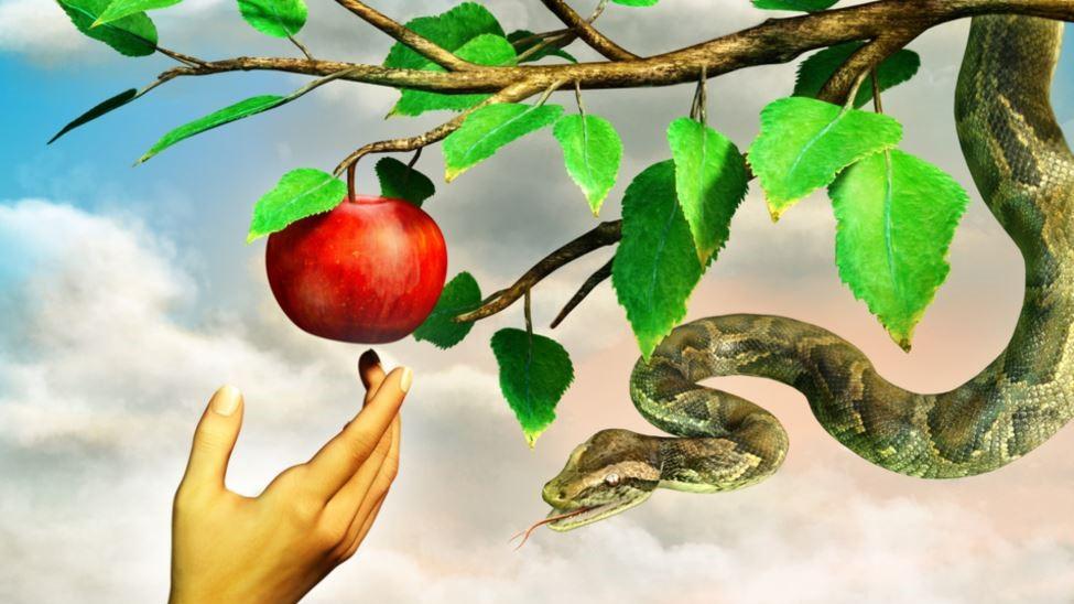 آیا فکر و اندیشه گناه نیز گناه شمرده میشود؟