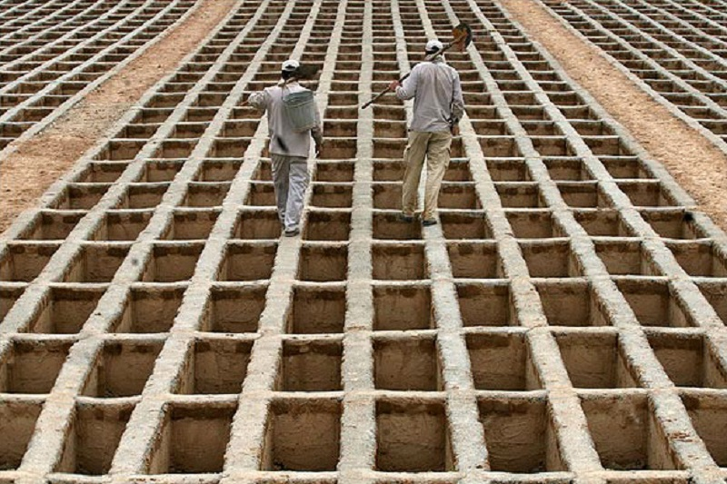 تکذیب افزایش قیمت قبور بهشتزهرا (س)