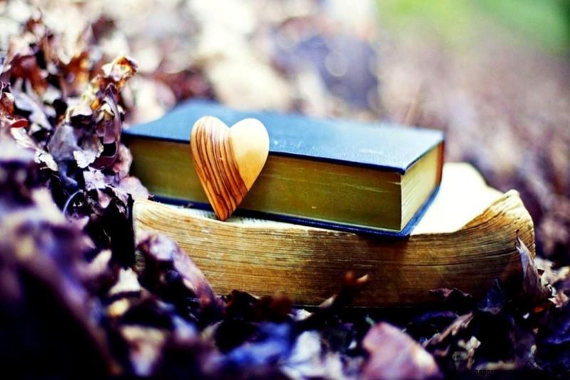 انتشارات مایا کتاب های جدیدی در حوزه رمان منتشر کرد
