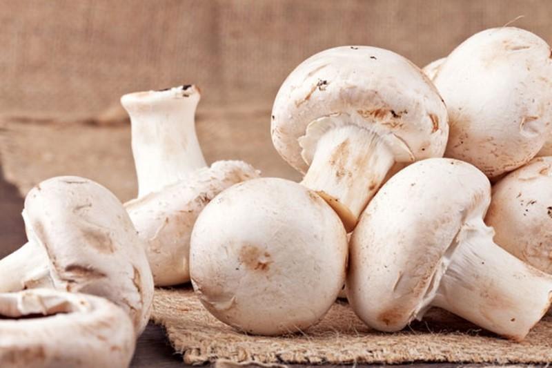 قیمت انواع قارچ در میادین میوه و تره بار+جدول