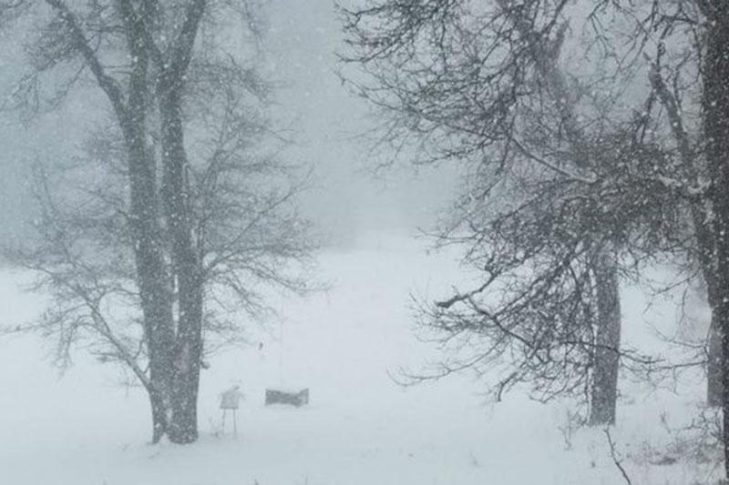 ورود هوای سرد برفی از شمال سیبری به ایران از ۱۶ بهمن