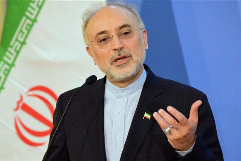 ایران در حوزه هسته ای نه فقط مهندسی معکوس بلکه قادر به طراحی است