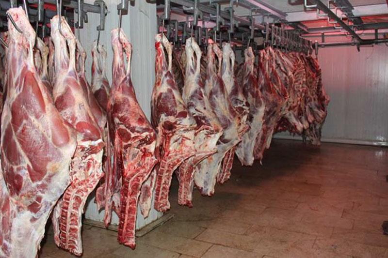 دپوی عمدی 17 هزار تن  گوشت
