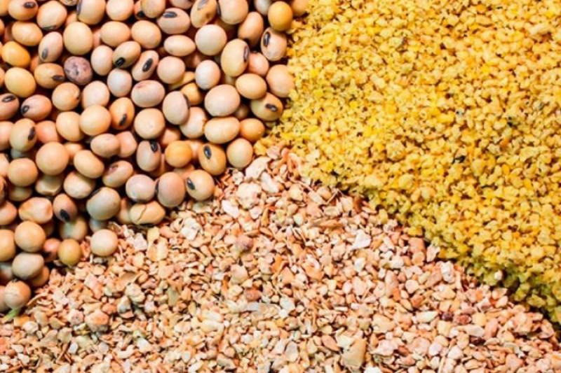 جدیدترین قیمت نهاده های دامی و کشاورزی در بازار