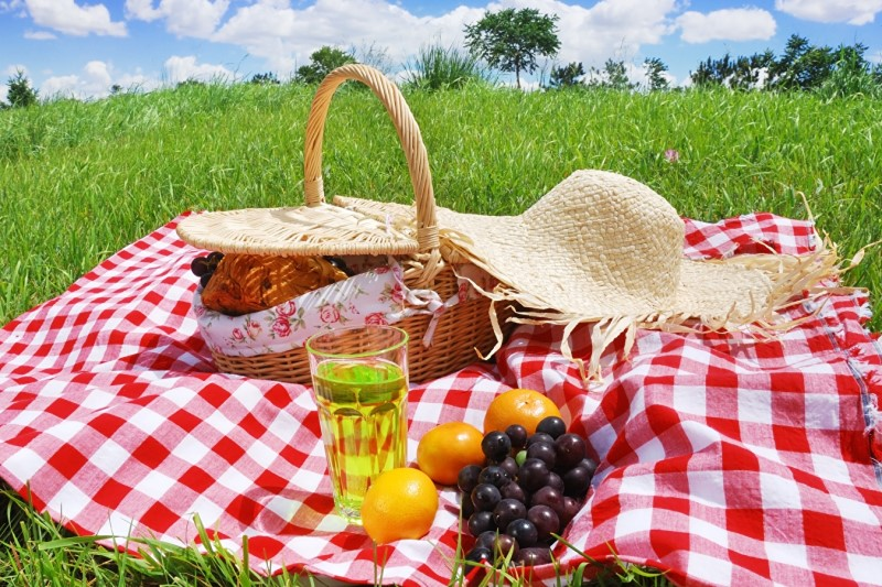 نکات تغذیهای ضروری در سفرهای نوروزی