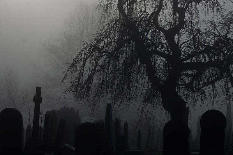 قبرستانهای جالبی که بد نیست قبل از مرگ به آنها سر بزنید+تصاویر