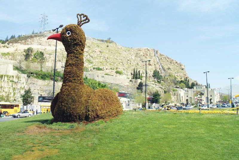 طاووس بد قدم دروازه شیراز آتش گرفت