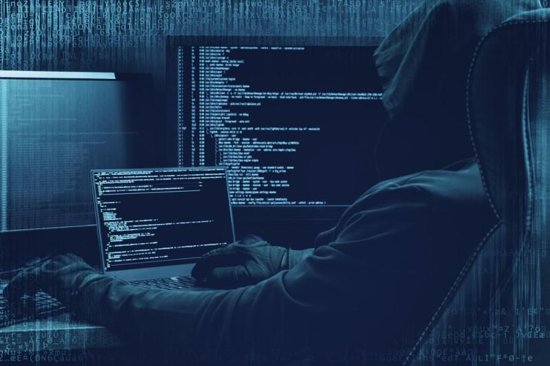 دارکوب یا وب تاریک چیست؟