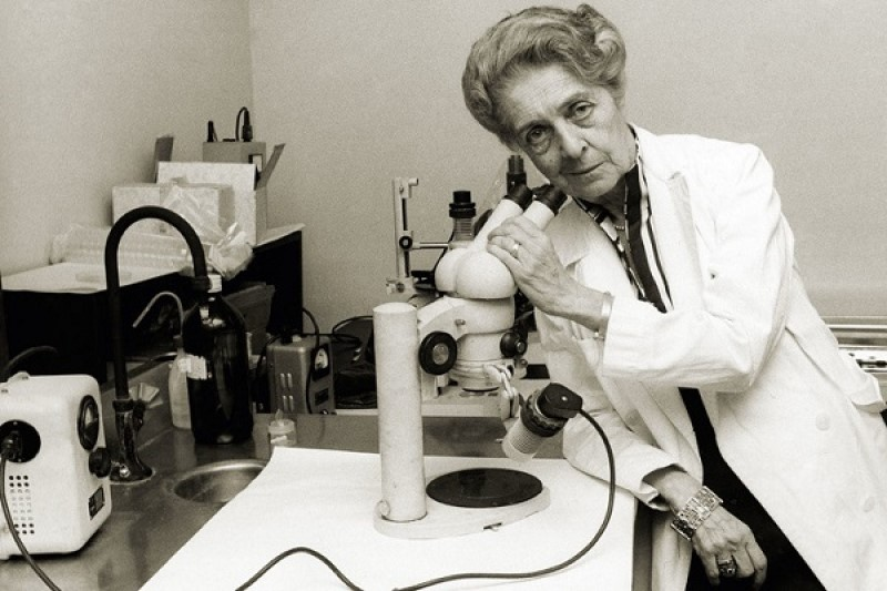 ۱۰ زن برجسته تاریخ که نقش مهمی در پیشرفت علم داشته اند+تصاویر