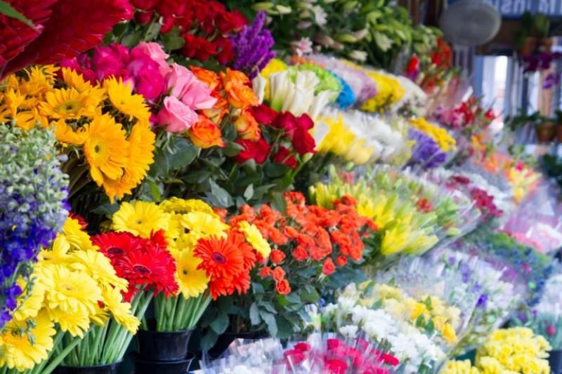 نرخ گل نوسان چندانی نداشته است