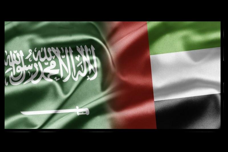 هدف مشترک عربستان و امارات در خارطوم چیست؟